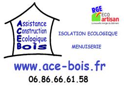 ACE BOIS100